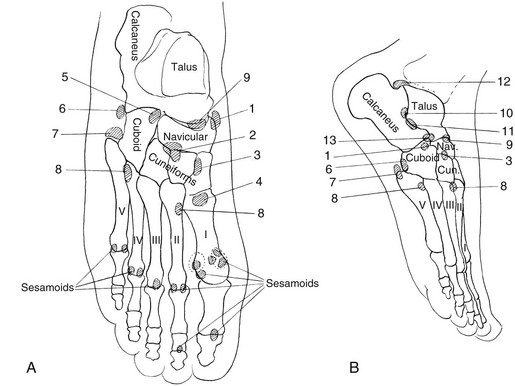 foot ossification centers