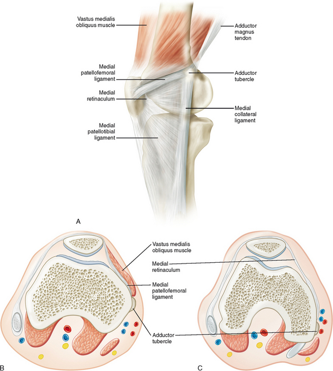 Imaging Of The Knee Radiology Key