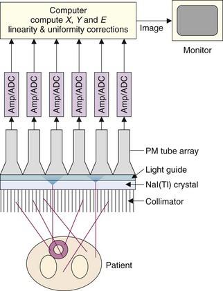 the gamma camera basic principles radiology key rh radiologykey com Sylvania Light Guide light guide design principles