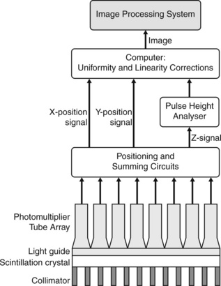 Imaging with radionuclides Radiology Key