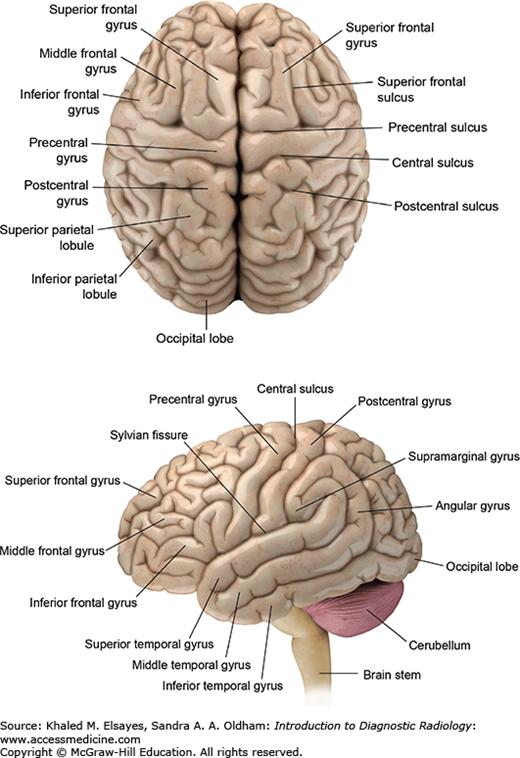 Diagnostic Neuroradiology Radiology Key