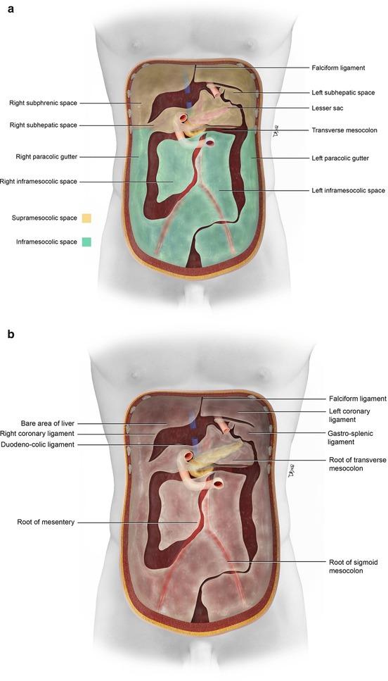 Left Pelvic Gutter Radiology Essentials 103 Ct Anatomy