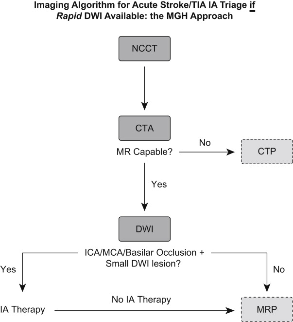 CT Perfusion Imaging in Acute Stroke | Radiology Key